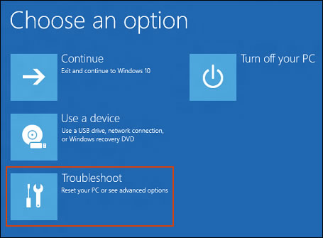 Selecting Troubleshoot in the Windows Recovery Environment
