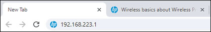 Typing the IP address in the internet browser address bar