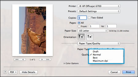 Selecting Normal print quality in the Print Settings window