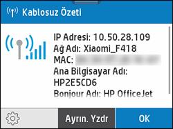 Örnek Kablosuz Bağlantı Özeti ekranı