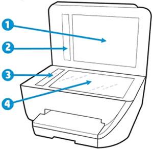 Reinigen des Scannerglases und der Unterseite der Abdeckung sowie der Glas- oder weißen Streifen (falls vorhanden)