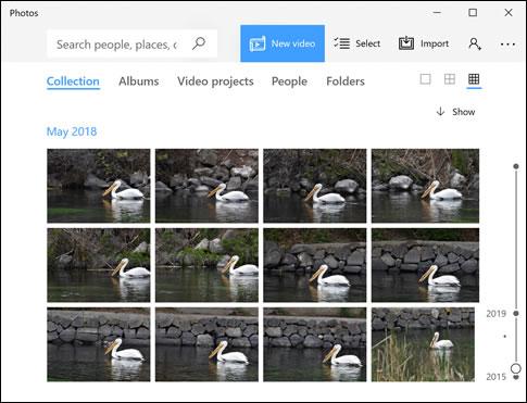 Aplicativo de fotos que exibe uma coleção de fotos