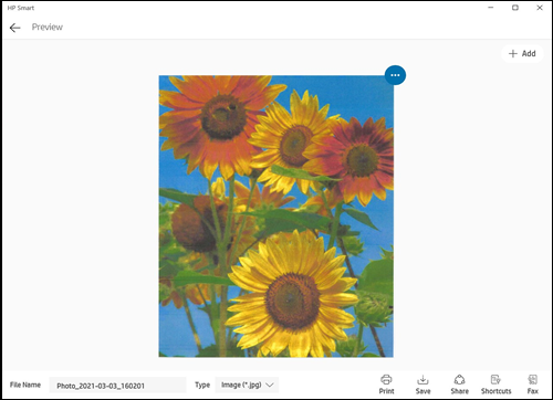 Preview of a scanned item in HP Smart