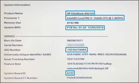 System Information window