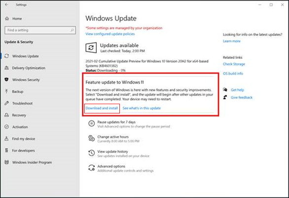 Windows Update screen showing Feature update to Windows 11 selected